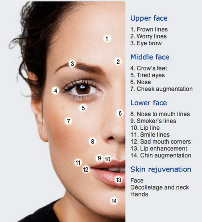 Regions of the face